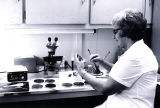 Hospital Clinical Lab, Dr. Jones