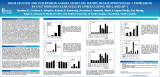 High Glucose and Interferon Gamma Stimulate Matrix Metalloproteinase-1 Expression in U937...