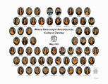 2012 Graduates of the Medical University of South Carolina College of Nursing (May)