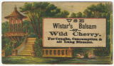 Use Wistar's balsam of wild cherry. For coughs, consumption and all lung diseases