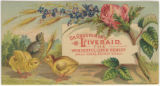 Dr. Grosvenor's Liveraid, the wonderful liver remedy